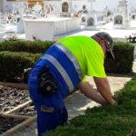 Medio Ambiente adecenta el Cementerio Municipal para Todos los Santos