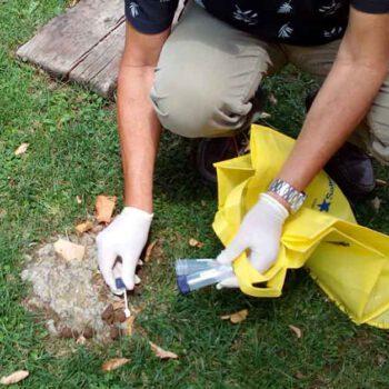 Unión Portuense propone analisis de ADN para evitar las heces caninas en la calle