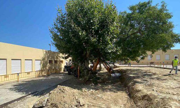 El Ayuntamiento arregla los hundimientos del patio del CEIP Marqués de Santa Cruz