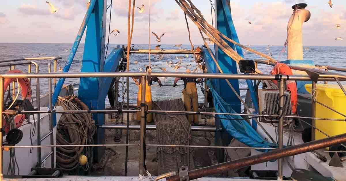 El sector pesquero de la Comarca Noroeste abre la convocatoria de ayudas europeas por 1,5 millones de euros