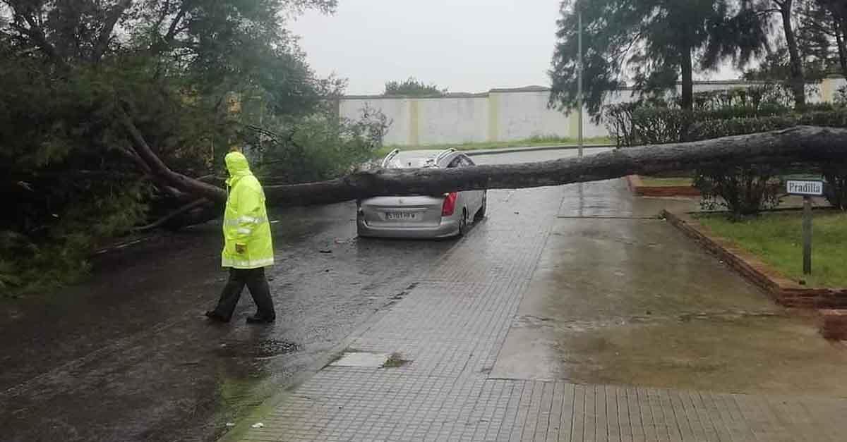El temporal de lluvia y viento deja varias incidencias en El Puerto