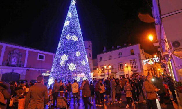 El gran árbol de Navidad se instalará este año en la Plaza del Castillo
