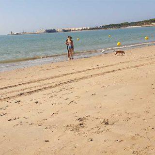 La provincia de Cádiz pasa a la fase 2: bañarse en la playa, cine, teatro y más aforo en bares