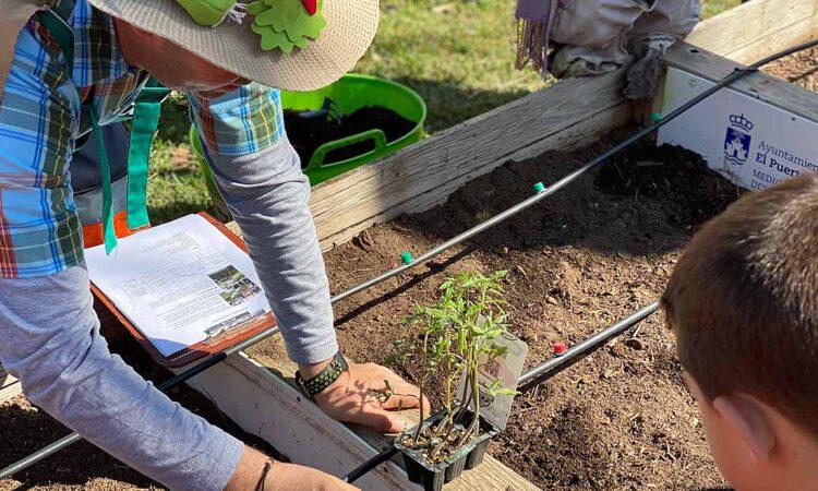 Seis centros portuenses participan en los huertos escolares