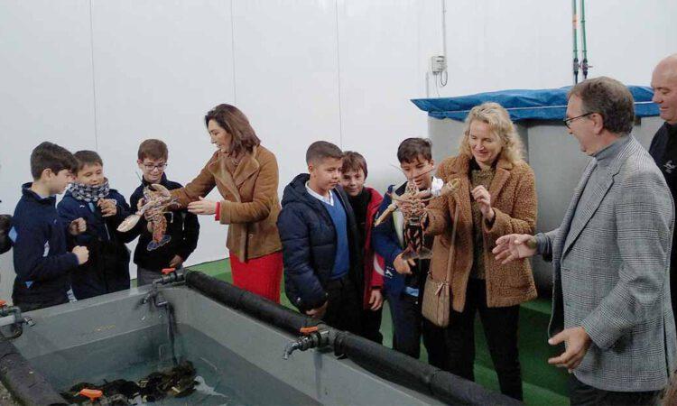 Escolares portuenses conocen el proceso de comercialización del marisco