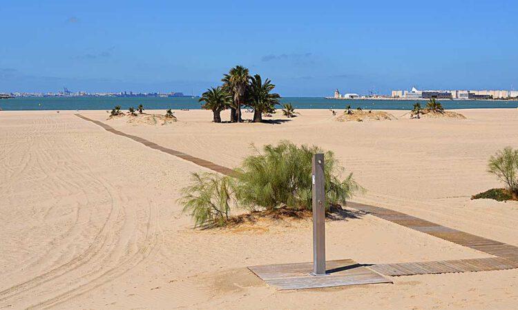 Aprobada por unanimidad la prórroga del contrato de Playas y Pinares