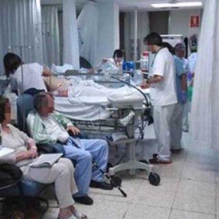 Andalucía: 5 brotes controlados o en investigación con 137 casos