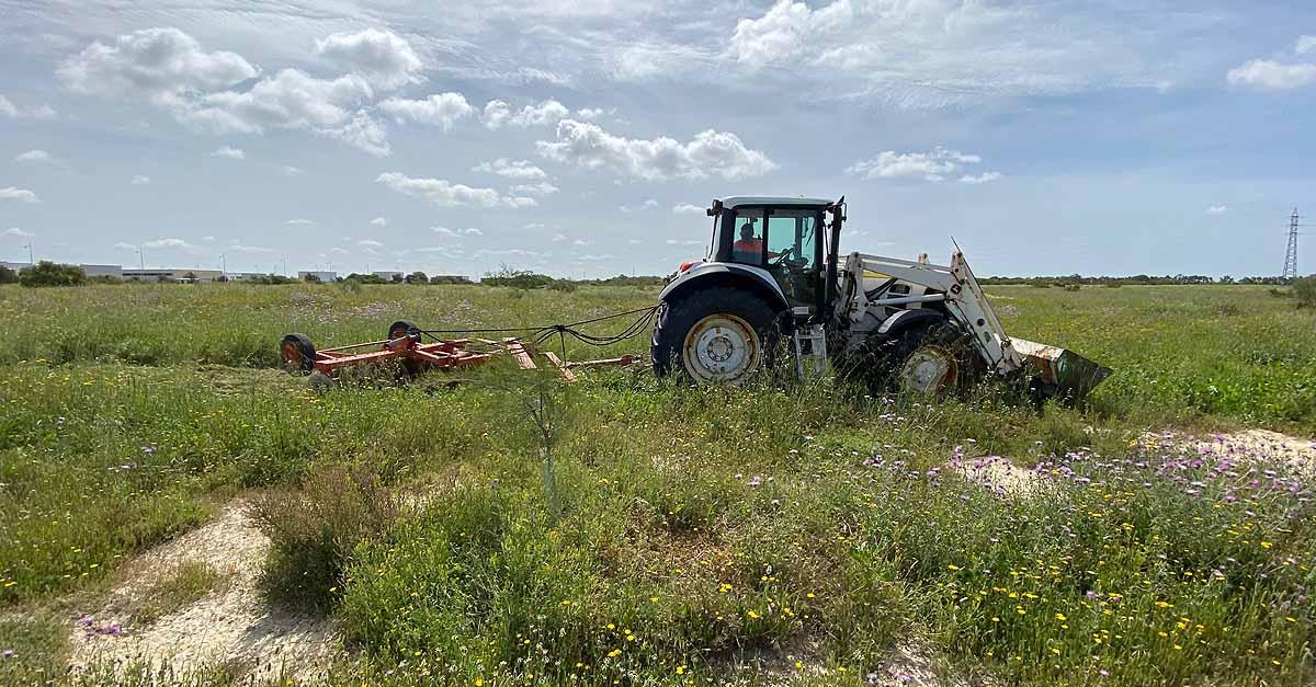 Los agricultores portuenses se podrán acoger a una línea de subvenciones