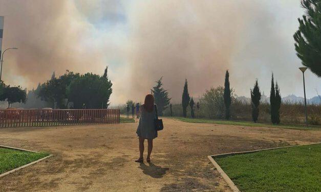 Bomberos extinguen un incendio en la zona de El Juncal