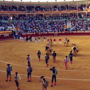 El PSOE pedirá una comisión de investigación sobre la corrida de toros
