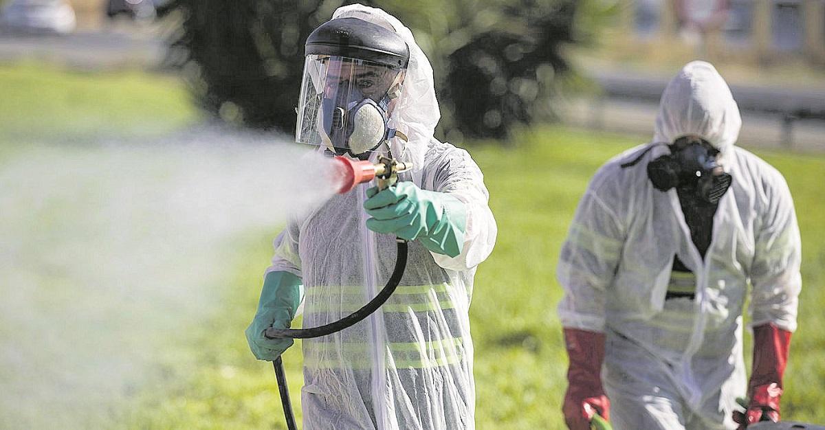 Detectado un caso de virus del Nilo en un caballo en El Puerto