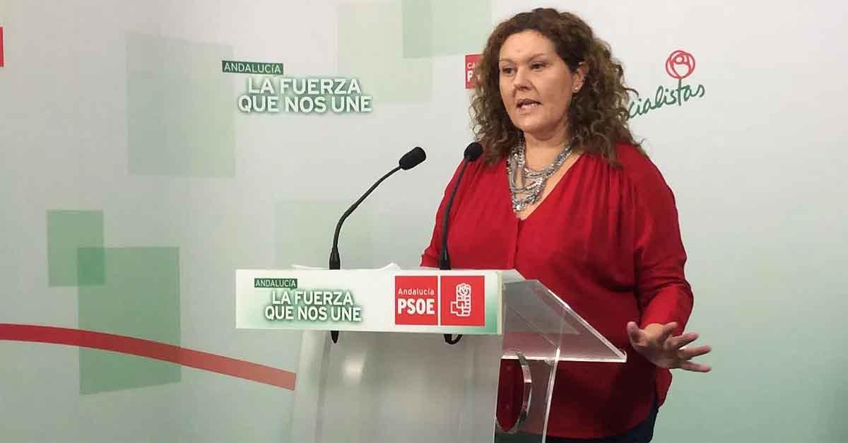 El PSOE desmiente los datos ofrecidos por García Pelayo sobre el Ingreso Mínimo Vital