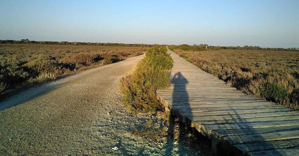 El camino de los esteros