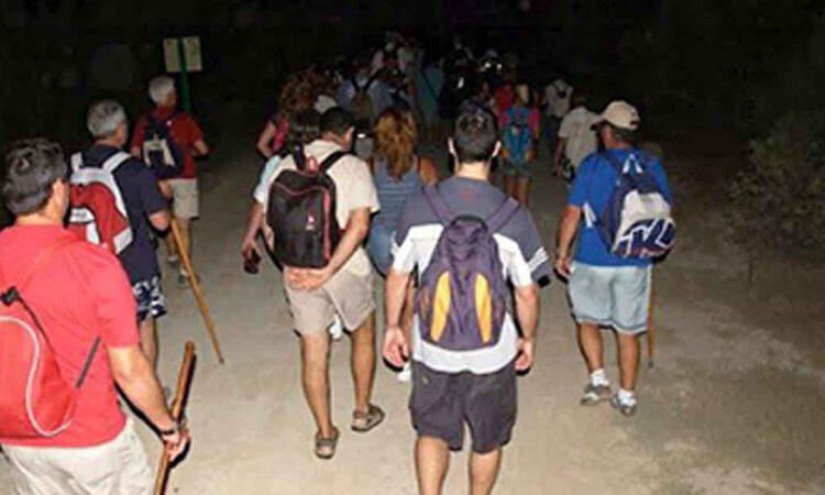 El 1 de julio comienza el programa ambiental Aventura Nocturna en Los Toruños